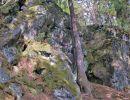 skály SV od vrcholu Jahodové hory