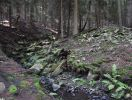 Drahlovický potok