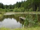Pstruhový rybník