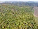 lesostep Na Pláních
