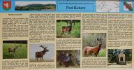 infocedule historie lovectví