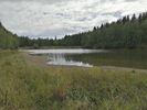 Wollmannův rybník